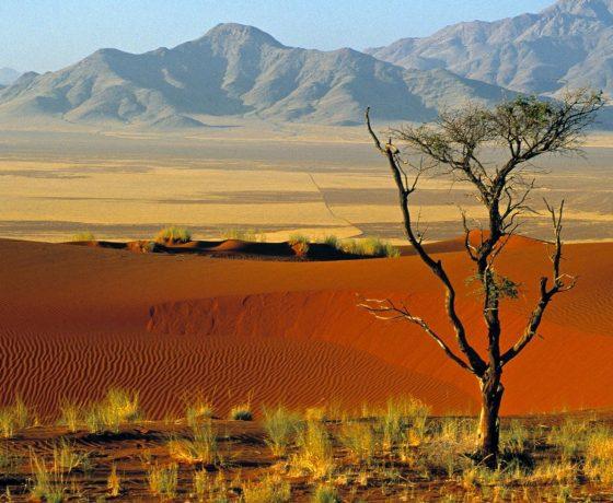 viaggio di nozze namibia e mauritius