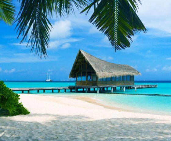 viaggio di nozze miami e bahamas